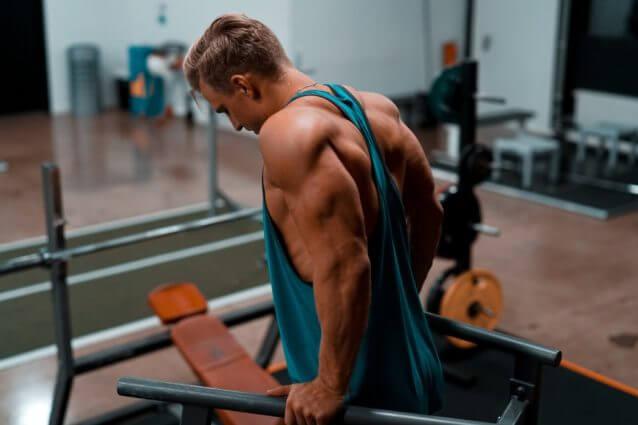 実は腕には多くの筋肉が存在している