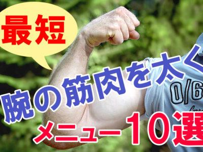 腕の筋肉を太くする家で鍛える筋トレメニュー10選(自重・ダンベル・器具なし)