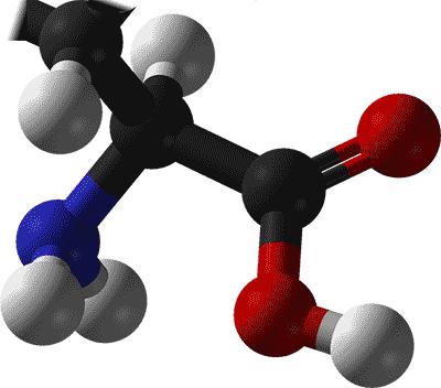 ファイラマッスルサプリHMB:BCAA(分岐鎖アミノ酸)