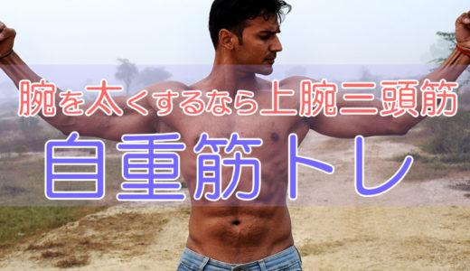 腕を太くするなら上腕三頭筋!鍛え方と効率的な自重筋トレ方法